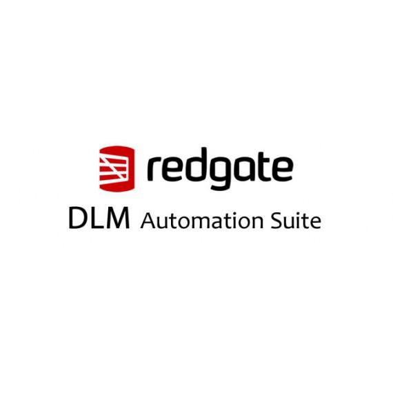 DLM Automation Suite 1 Ano de Assinatura